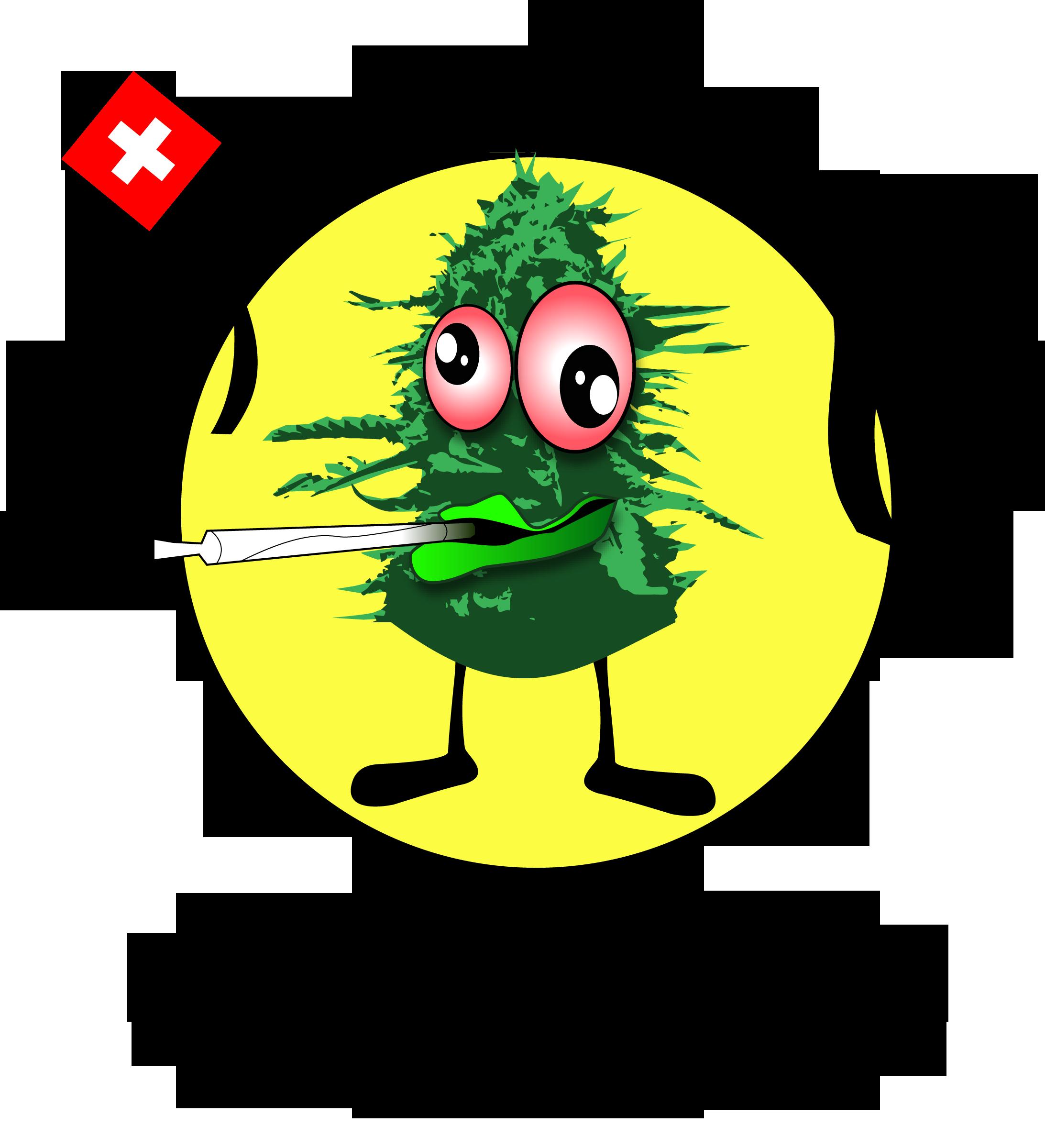 www.mistabudzswiss.ch